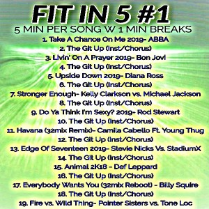 Fit in 5 #1